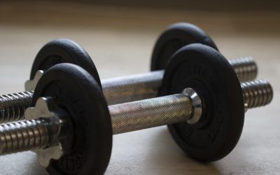 Les protéines dans le sport et pas que dans la musculation